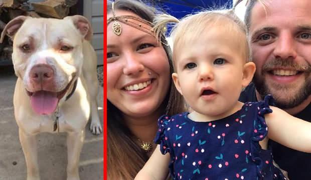 17 aylık bebeği parçalayarak öldürdü